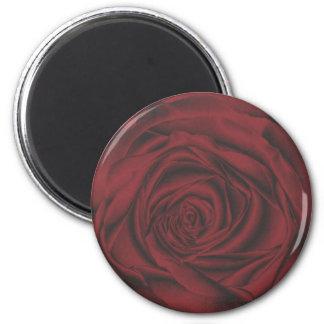 rosa rojo fabuloso imanes para frigoríficos