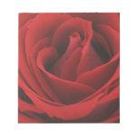 Rosa rojo floreciente blocs de notas