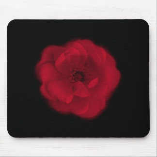 Rosa rojo. Fondo negro Tapetes De Raton