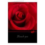 Rosa rojo - gracias cardar tarjetón