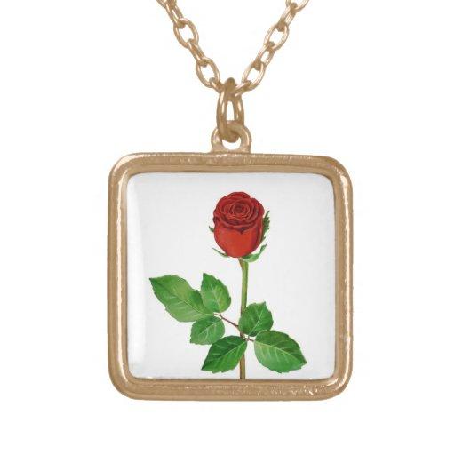 Rosa rojo grimpolas
