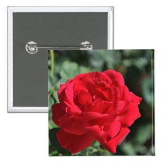 Rosa rojo hermoso pin cuadrada 5 cm