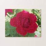 Rosa rojo hermoso puzzles