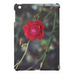 Rosa rojo iPad mini cárcasa