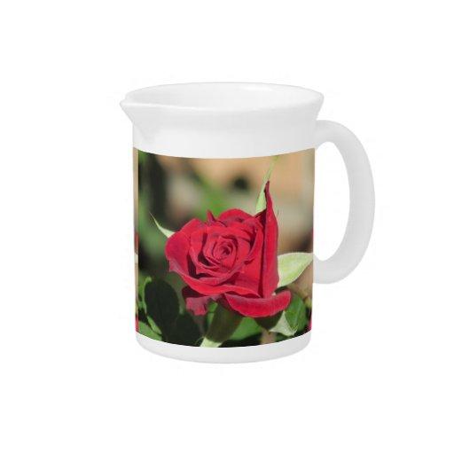 Rosa rojo jarras para bebida