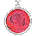Rosa rojo joyería