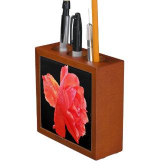 Rosa rojo organizador de escritorio