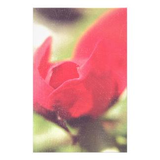Rosa rojo papeleria de diseño