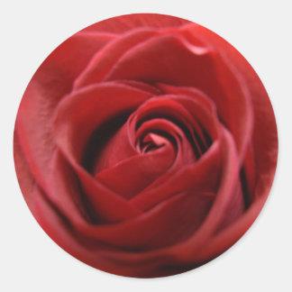 Rosa rojo pegatinas