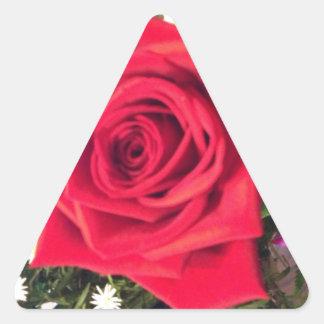 Rosa rojo pegatina de triangulo