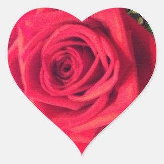 Rosa rojo calcomania corazon