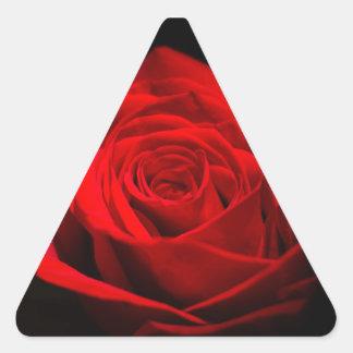 Rosa rojo pegatina triangular