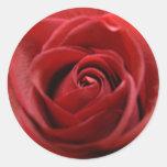 Rosa rojo pegatinas redondas