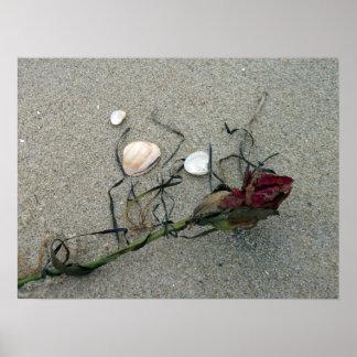 Rosa rojo perdido en el mar póster