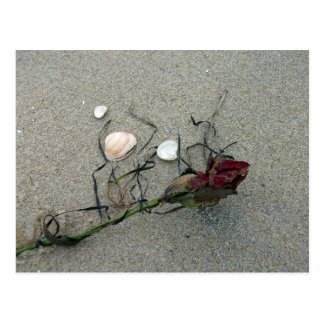 Rosa rojo perdido en el mar tarjetas postales