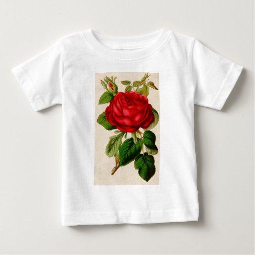 Rosa rojo playera