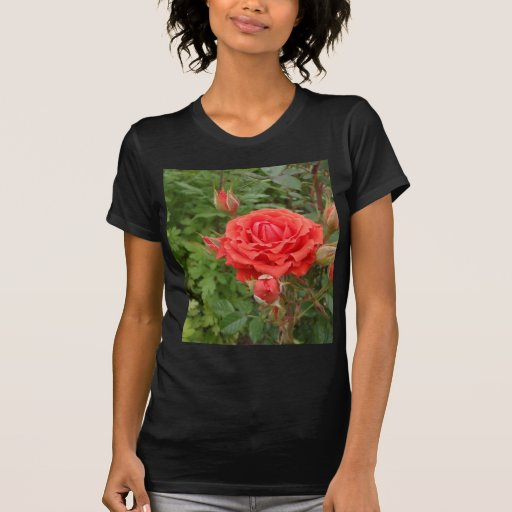 Rosa rojo polera