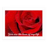 Rosa rojo postales