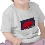 Rosa rojo romántico y significado camisetas