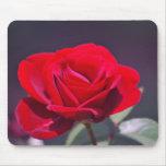 Rosa rojo romántico y significado alfombrillas de ratones