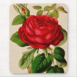 Rosa rojo tapete de raton