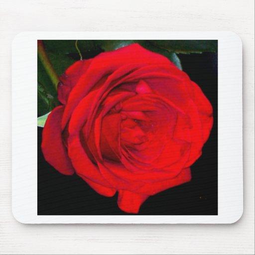 Rosa rojo tapetes de raton