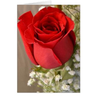 Rosa rojo tarjetón