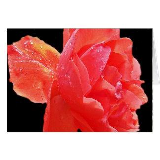 Rosa rojo tarjeta de felicitación