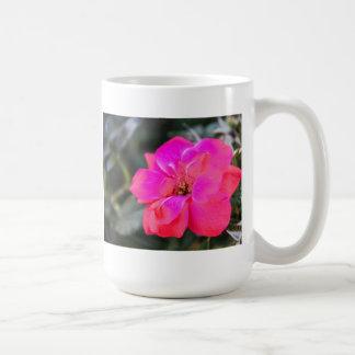 rosa rojo taza clásica