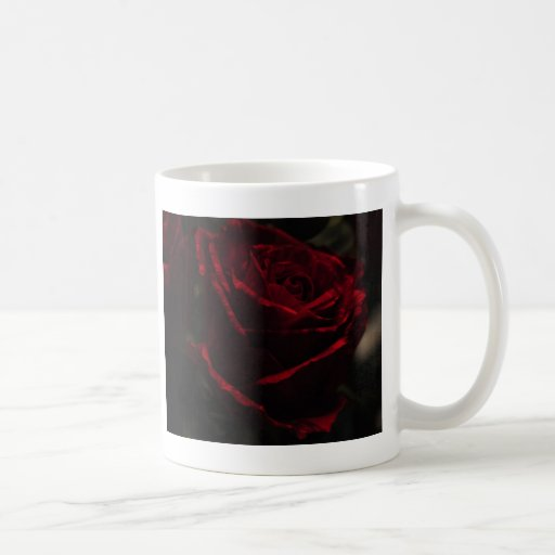 Rosa rojo taza de café