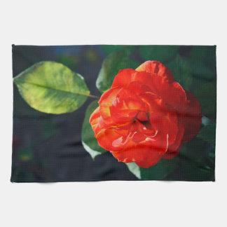 Rosa rojo toallas de cocina