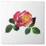 Rosa rojo y amarillo azulejo cerámica