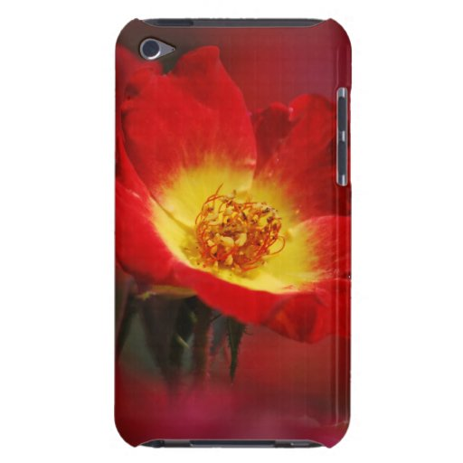 Rosa rojo y amarillo Case-Mate iPod touch protectores
