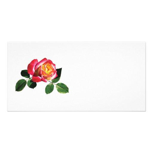 Rosa rojo y amarillo tarjetas personales