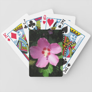 Rosa rosado bonito de la flor de Sharon Barajas De Cartas