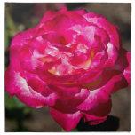 Rosa rosado y blanco magenta servilletas de papel
