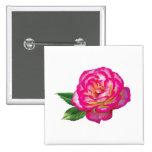 Rosa rosado y blanco pins