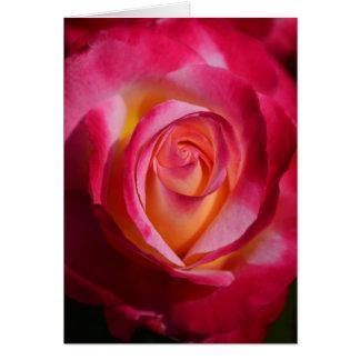 Rosa rosado y rojo con puntos culminantes amarillo tarjeta pequeña