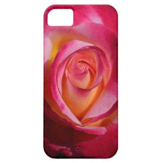 Rosa rosado y rojo con puntos culminantes iPhone 5 carcasas