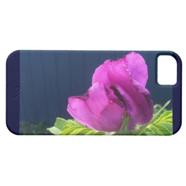 Beach Themed Rosa Rugosa Beach Rose Brilliant Purple Pink iPhone SE/5/5s Case