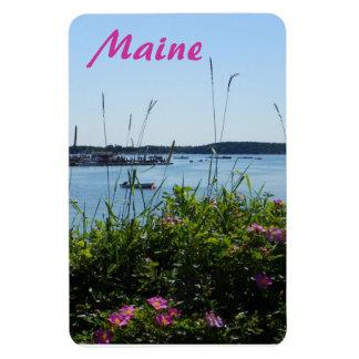 Rosa Rugosa in Bloom; Stonington Maine Magnet