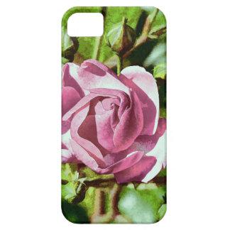 Rosa subió, naturaleza iPhone 5 carcasas