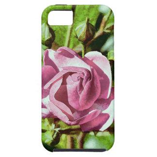 Rosa subió, naturaleza iPhone 5 funda