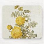 Rosa Sulfurea de los 'rosas de Les Mouse Pad