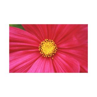 rosa y amarillo lona estirada galerías