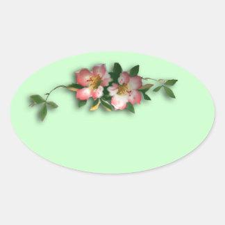 Rosa y pegatinas florales del fondo de la menta pegatina ovalada