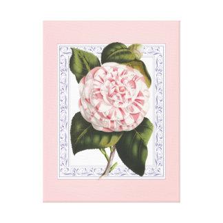 Rosado bonito y blanco de la camelia elegante del  impresión en lienzo
