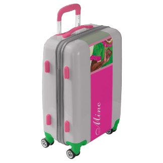 Rosado y verde bonitos maletas