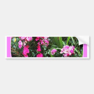 Rosaleda del rosa de cabaña del Victorian por Pegatina Para Auto