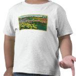 Rosaleda municipal en el condado de Santa Clara Camiseta